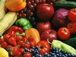 Свежие овощи и фрукты с Юга Кыргызстана
