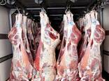 Говядина на кости, блочное мясо говядины, говяжий ливер. - photo 1