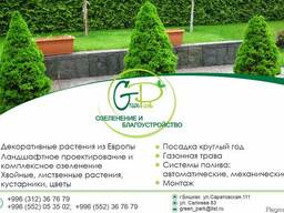 """Green Park"" Озеленение и Благоустройство"