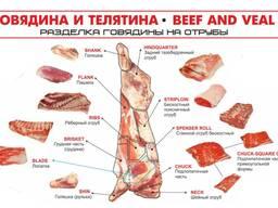 Отруба говядина ОПТ - фото 2