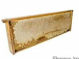 Сотовый мед: рамка, полурамка, секционный