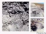 Угольное предприятие приглашает партнеров - фото 1