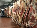 Уй эти бык жана уч Украинанын - фото 8